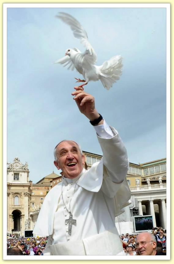 Retour Évangile de la joie/pape François/ Pape_colombe