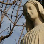 La Miséricorde à la lumière de l'Ecriture Sainte