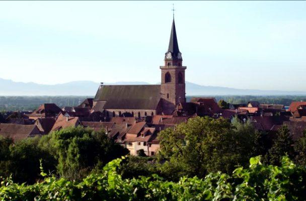 122133492-zellenberg-toit-en-tuiles-maison-a-colombages-grappe-de-raisin